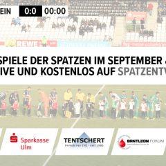 Kostenfreier SSV-Livestream für alle Heimspiele bis Ende Oktober